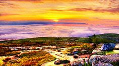 Bob and Nadine Johnston Metal Prints - Acadia National Park Cadillac Mountain Metal Print by Bob and Nadine Johnston