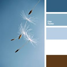 Free collection of color palettes ideas for all the occasions: decorate your house, flat, bedroom, kitchen, living room and even wedding with our color ideas | Page 260 of 363.