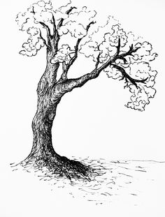 #tree #oldtree #mightytree #blackandwhite #draw #handdraw #ViannaV