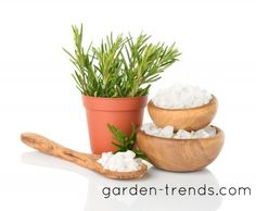 GARDENING WITH EPSOM SALT ~ Gardeners have been using Epsom salts for healthy gardening for years. As an affordable and environmentally-friendly addition to your garden soil, Epsom salts provide what's needed for a garden that thrives. Adding Epsom salt to your soil or gardening water is essential for vibrant vegetation.