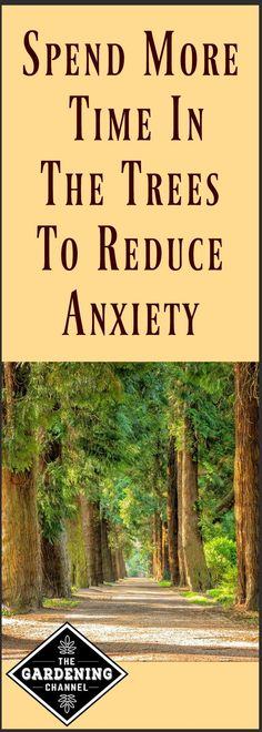 Spend time in nature to reduce stress and anxiety. No more excuses needed to spend more time in the garden.  It can improve your health.