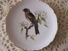 Schumann Bavaria Fine China Collector Plate. Bird Collection. 22. ct. Gold Rimmed