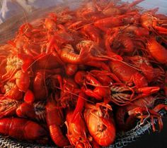 How to Make 200lbs of Crawfish for 75+ Family & Friends