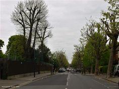 Mapesbury Road. Willesden NW2
