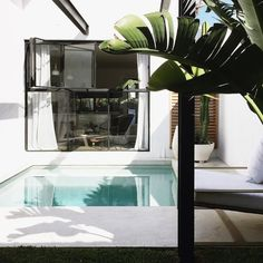 10 Minimalist Swimming Pool Designs for Small Terraced Houses - Modern Swimming Pool Designs, Swimming Pools, Interior Design Hd, Planting Plan, Garden Pool, Little White, Terrace, Garden Design, Things To Come