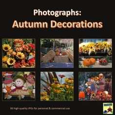 Photographs: Autumn Decorations Commercial and Personal Licenses -- 36 gorgeous Autumn and harvest themed photos.   Spruce up your presentations, flashcards, holiday poetry, etc...    Contents: 1 Harvest Decoration, 3 background scenes, 5 carriages or wagons, 5 Jack O' Lantern Scarecrows, 5 Jack O' Lantern Scarecrow scenes, 6 flowers, and 11 floral arrangements.