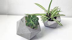 Image result for concrete planters melbourne
