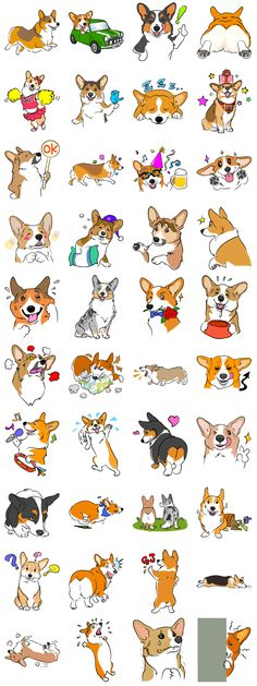 Welsh Corgi - LINE Creators' Stickers