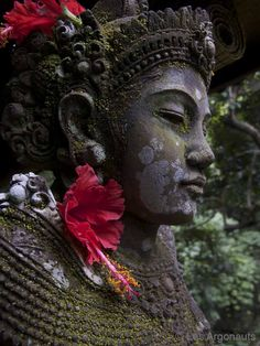 zen Buddha statue with flower in ears. Bali. (photo by Les Argonauts) (via kelledia.tumblr 49659244050)
