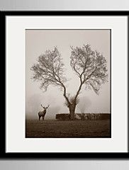 E-HOME® Framed Canvas Art, A Tree And A Deer Framed Canvas Print One Pcs – USD $ 86.99