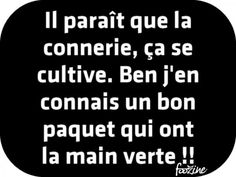 Funny Quotes : Il paraît que la connerie… Image Citation, Quote Citation, Favorite Quotes, Best Quotes, Love Quotes, Twitter Quotes Funny, Funny Quotes, The Words, Mantra