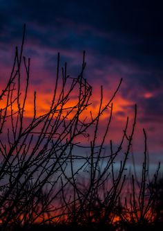 Sunset of the of February, 2015 on by Nathan Petrillo, USA Nikon D3200, February 2015, Planet Earth, Wonders Of The World, Beautiful Things, Natural Beauty, Planets, Sunset, Landscape