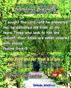 Good Morning Greetings, Good Morning Quotes, Sunday Love, Seek The Lord, Morning Blessings, Maldives, How To Stay Healthy, Psalms, Bible Verses