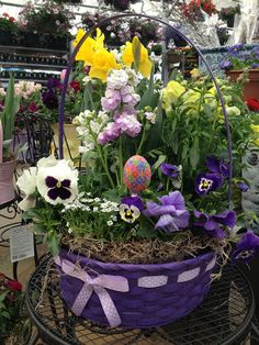 Easter flowers available at the garden center right now they easter flowers available at the garden center right now they make the perfect hostess gift or table centerpiece buckscountrygardens pinterest negle Images