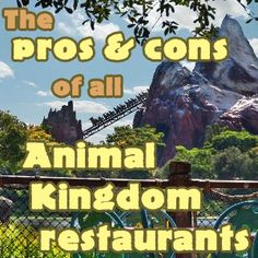 The pros and cons of all Animal Kingdom restaurants from @Shannon, WDW Prep School