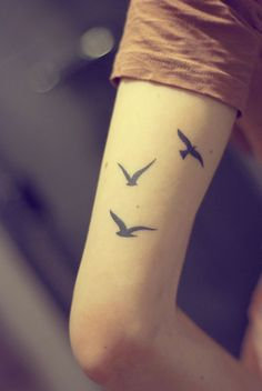 Stunning Designs Of Small Birds Flying On Hands Of Attractive Men