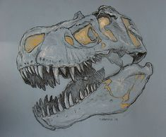 Tyrannosaurus Rex Skull Study by Art and Nature-Mike Sherman, via Flickr