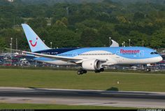 Boeing 787-8 Dreamliner aircraft picture