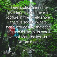There is pleasure in the pathless woods, there is rapture in the lonely shore, there is society where none intrudes, by the deep sea and music in its roar; I love not Man the less, but Nature more. ~ Lord Byron 🌲🌳🌵🍃🌱🐛🦋🐦🦌 #pachavega  #rawwisdom #mantra #positivity #healthylivingtips  #healthylivingjourney #wellness #holistichealth #livelaughlove #rawwholeplantbased #poweredbyplants #wholefoodslife #lifequotes  #selflove #awesomewisdom #nature #manofthewoods #woods #travel