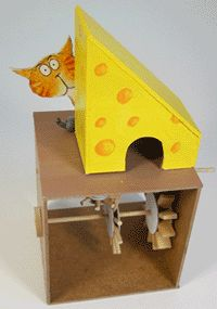 cat and mouse automata