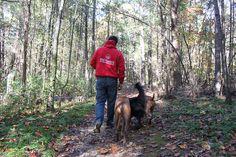 get free dog training courses go to http://FreeDogTraining.bestonlineproducts.net