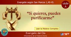 MISIONEROS DE LA PALABRA DIVINA: EVANGELIO - SAN MARCOS