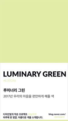 [오늘의 빛: 오늘의 색] 팬톤이 휴식의 색으로 선택한 루미너리 그린 : 네이버 블로그 Flat Color Palette, Colour Pallette, Pantone Colour Palettes, Pantone Color, Pantone Green, Aesthetic Colors, Aesthetic Pictures, Colour Board, Color Swatches