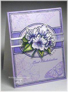 Fabulous Frame Botanical - stampTV