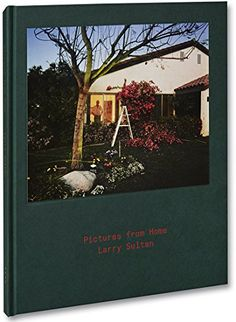 Pictures from Home by Larry Sultan https://www.amazon.com/dp/191016478X/ref=cm_sw_r_pi_dp_x_tivcAb5BT0EAH