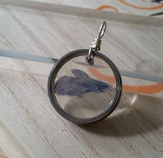 """This one of a kind fish bowl pendant is a dream come true for any fish lover. Forever trapped in a shadow box of resin this little betta is waiting to go home with you. Totally translucent, you can watch the sun shine right through it as you day dream about where you'd rather be. ¸¸.•¨`•¸,:•: >(