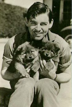 Clark Gable holding two puppies. Hollywood Stars, Golden Age Of Hollywood, Vintage Hollywood, Classic Hollywood, Hollywood Actor, Hollywood Glamour, Hollywood Actresses, Clark Gable, Classic Movie Stars