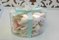 Assorted Starfish and Seashells