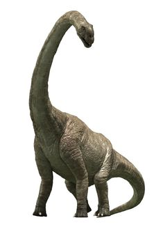 Pukyongosaurus is a sauropod-type dinosaur that lived 130 Million Years Ago during the Early Cretaceous Period in, what is now, South Korea. Dinosaurs Series, Jurassic World Dinosaurs, Jurassic Park World, Dinosaur Gifts, Dinosaur Art, Dinosaur Birthday, Dinosaur Images, Dinosaur Pictures, Long Neck Dinosaur