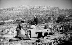 Panzer in the Luftwaffe