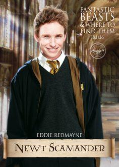 Eddie Redmayne as Newt Scamander  fanmade by www.muggle-v.com