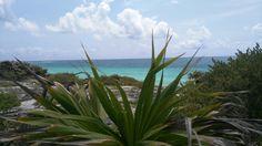 #cancun