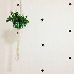 A parede da @tatycamara está um charme só com os nossos adesivos geométricos de bolinha preta! Um pano de fundo perfeito para receber o vasinho de suculenta pendurado com o hanger da @collector55. - Fotos como essa nos mostram como a simplicidade pode ser surpreendente!  - Quer conhecer nossos adesivos geométricos para móveis e paredes? Vem com a gente: http://ift.tt/1dqyBxz.  - #nacasadajoana #nacasadataty #design #decoração #nacasadetodomundo #decor #decora #adesivosdeparede…