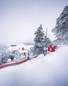 💙 Hey folks! Here is an eye candy for you: snowy Pispala and Pyynikki ridge ❄ Looking for winter holiday ideas in Tampere? We gathered tips for you ☃️ ➡️check out our today's IG Stories! 📷Laura Vanzo / Visit Tampere Examples Of Art, Art Nouveau Architecture, Ig Story, Winter Holidays, Finland, Holiday Ideas, Eye Candy, Folk, City