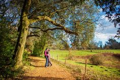 Staunton-Country-Park-Hampshire-Wedding-Photographer-Ben-and-Ria-Engagement-Session-Photography-By-Vicki018