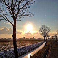 Ezinge - Groningen - The Netherlands