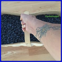 WILD Blueberries. Anyone  living in Ontario knows just how Awesome these Blue Babies are! I can hardly lift the bushel basket I bought today. I'm going to freeze most of these for Smoothies, Drinks, Nice Milks for the Winter. But right now I'm going to shove as many as I can in my mouth! LOL  #wildblueberries #blueberries #blueberryseason #raw #berries #plantpower