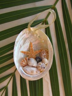 Abalone Shell Ornament, Beach Decor Christmas Ornament, Nautical Ornament, Seashell Ornament