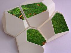Voronoi Flower Pot at likefigures.com