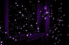 purple aesthetics | neon purple purple haze dark purple magenta purple aesthetic we heart ...