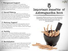 Heard about the amazing benefits of Ashwagandha?   #Healthtips #Homeremedies #Ayurveda