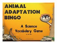 Trail 4 Success Blog: Science Animal Adaptations Bingo - My Newest Freebie on TPT