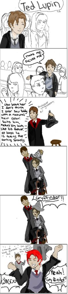 Teddy Lupin and the Sorting by DidxSomeonexSayxMad.deviantart.com on @deviantART I'm pretty sure this is fan art from before JK's official say in it.