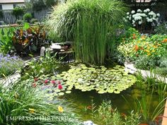 Beautiful backyard pond ideas for all budgets | Medium size inground garden pond with water lilies