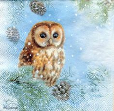 Paper Napkins for Decoupage Decopatch Craft - Tawny Owl Christmas Owls, Christmas Scenes, Vintage Christmas, Winter Pictures, Christmas Pictures, Art Pictures, Animal Paintings, Animal Drawings, Paper Napkins For Decoupage