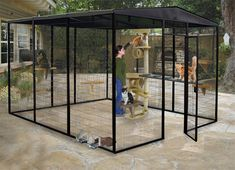 Custom Cages manufactures outdoor cat cages for your felines so they can run through their cat run and enjoy the sunshine outside without the fear of escape! Outdoor Cat Cage, Outdoor Cat Enclosure, Outdoor Cats, Cat House Outdoor, Diy Cat Enclosure, Cat Cage Outside, Outdoor Cat Kennel, Patio Enclosures, Reptile Enclosure